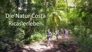 Natur erleben auf unseren Costa Rica Reisen - travel-to-nature