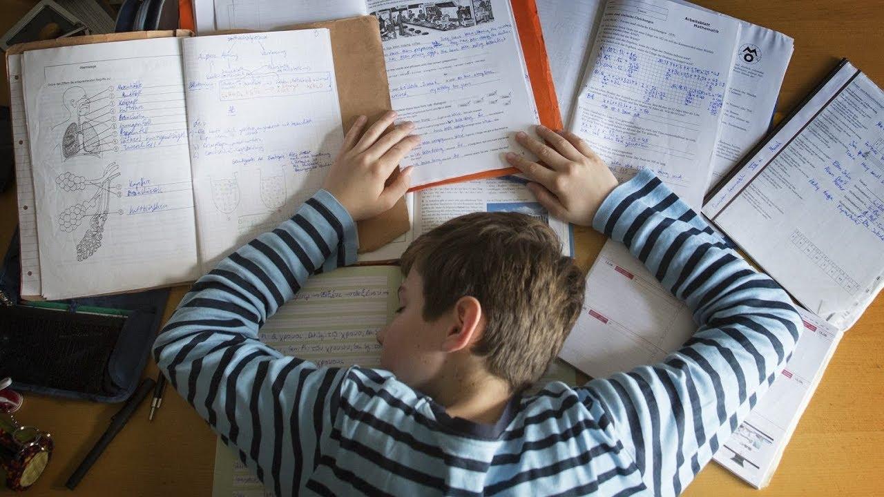 Домашнее задание для школьников могут отменить