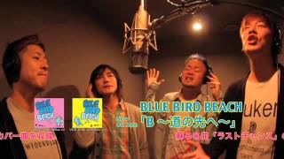 BLUE BIRD BEACHアーティスト写真