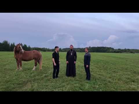 В поле с конем