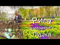 Рига Латвия: Бастионная горка , Мост Влюбленных и пушка #9 #Авиамания