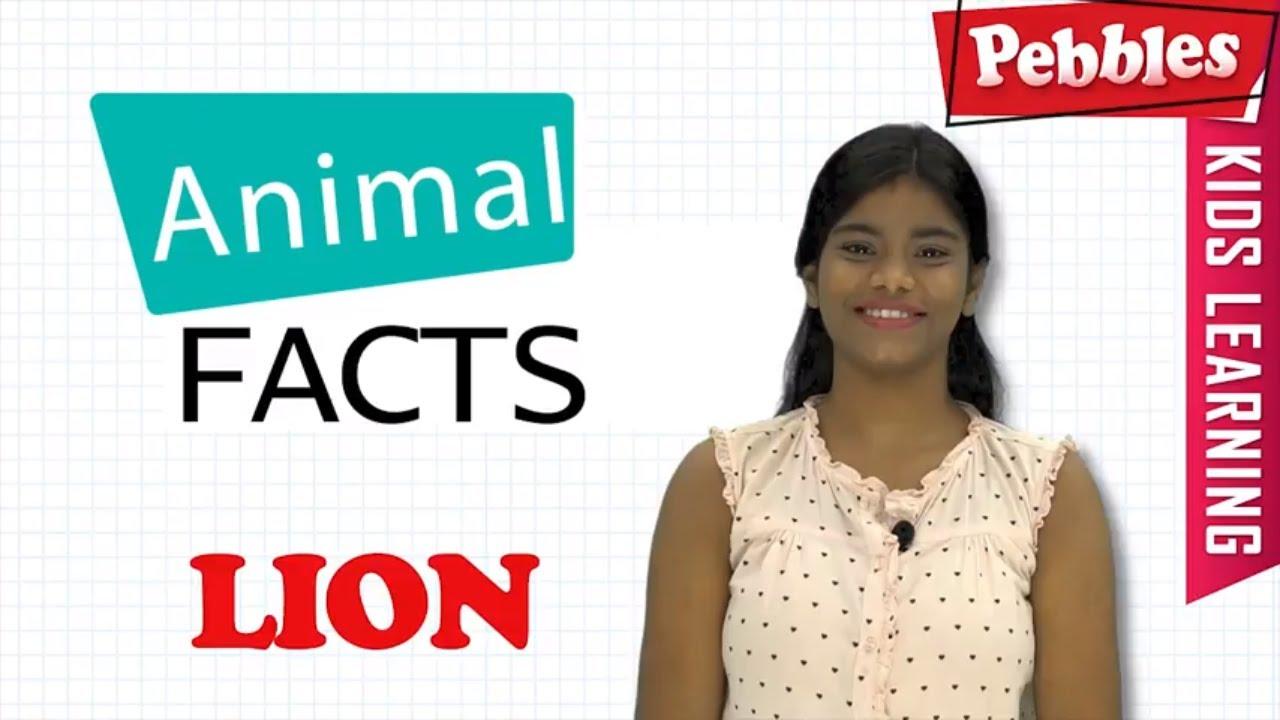 High School Argumentative Essay Topics Interesting Animal Facts  Lion  Lion Essay In Bengali  Lion Song  Lion  Story  Learn Animals High School Narrative Essay also Thesis For Essay Interesting Animal Facts  Lion  Lion Essay In Bengali  Lion Song  Persuasive Essay Example High School