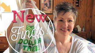 Dollar Tree Haul | New Finds | April 14, 2019