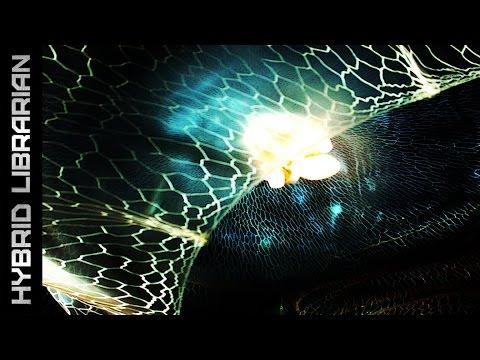 World's 10 Strangest Unknown Creatures