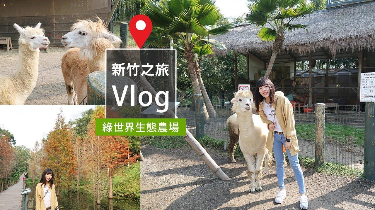 新竹之旅 草泥馬我來了!被萌翻的一天❤ 綠世界生態農場 佳佳Jia