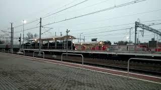 Паровоз прибывает на станцию Зеленогорск