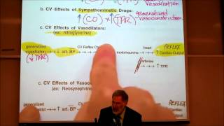 AUTONOMIC DRUGS; PART 2; Epinephrine & Dosage Calculations by Professor Fink