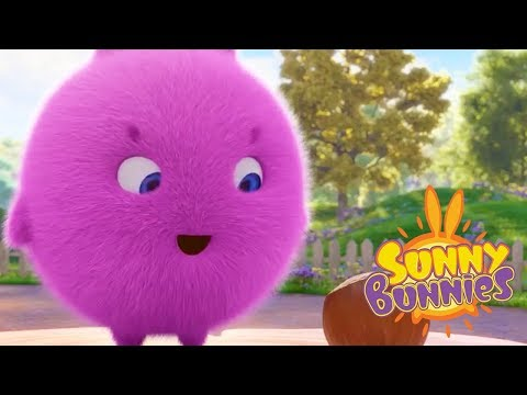 Cartoons for Children | Sunny Bunnies - GOING NUTS | SUNNY BUNNIES | Funny Cartoons For Children