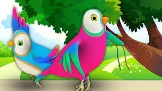 две маленькие дикие птицы | песня детей | дети песня | Two Little Dicky Birds | Little Tree House