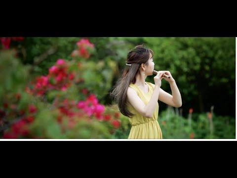 Hoa Thiên Cốt - Sáo Tàu (dizi) Dong min