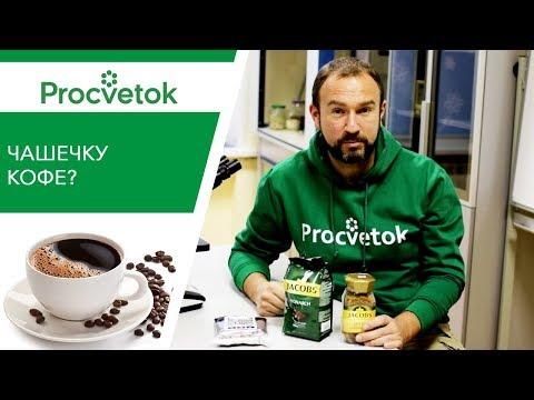 Вопрос: Кофе в качестве удобрения как его использовать?