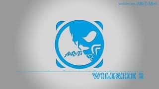 Wildside 2 By Niklas Ahlström -  Modern Blues Musi