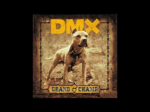 DMX Fuk Y'All mp3