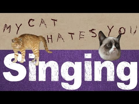 top 10 Cats that Hate Bad Singing (cat doesnt like singing)