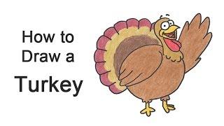 How to Draw a Cartoon Thanksgiving Turkey