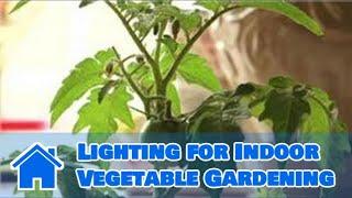 Indoor Gardening Tips : Lighting for Indoor Vegetable Gardening