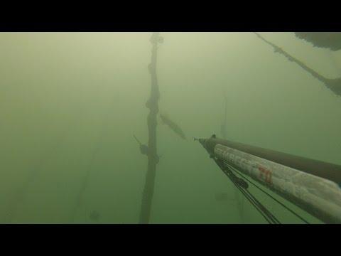 рыбалка щука видео уроки