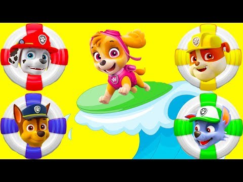 Paw Patrol Water Slide Amusement Park Playset with Skye Chase and Disney Moana