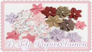 Gambar cover DIY Papierblumen ||  Craft update #12  & Tutorial  || Bastel-Fee