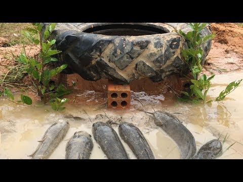 How to make Fish Trap By old Tractor Tire And Bricks