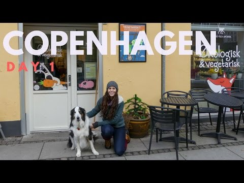 Day One In Copenhagen | What I Ate + Shopping