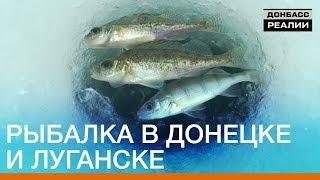 Рибалка в Донецьку і Луганську   Донбас.Реалії