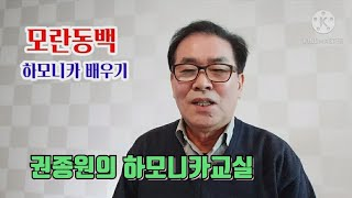 모란동백 - 하모니카 배우기
