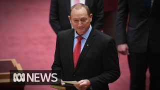 Entire parliament condemns Fraser Anning's controversial maiden speech | ABC News