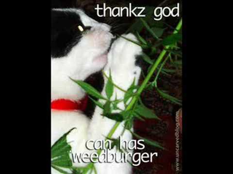 Gospel Weed