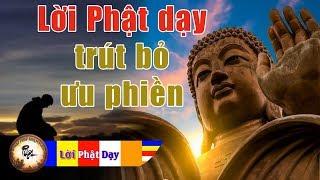 Lời Phật dạy buông bỏ phiền não - Vì sao Người Lương Thiện hay gặp buồn phiền trắc trở