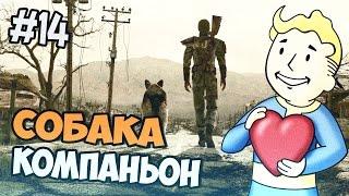 Fallout 3 Прохождение - Собака-компаньон - Часть 14