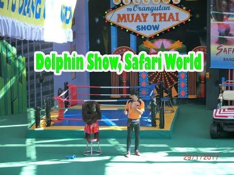 Monkey Show at Safari World, Bangkok Thailand (29/01/2017)