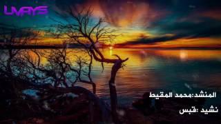 نشيد قبس | محمد المقيط