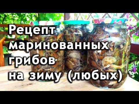 Рецепт грибов маринованных на зиму (любых). Маринованные грибы.
