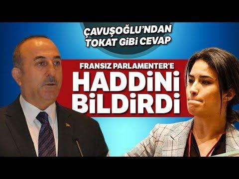 Bakan Çavuşoğlu Sert Çıktı, Fransız Parlementerler Salonu Terk Etti