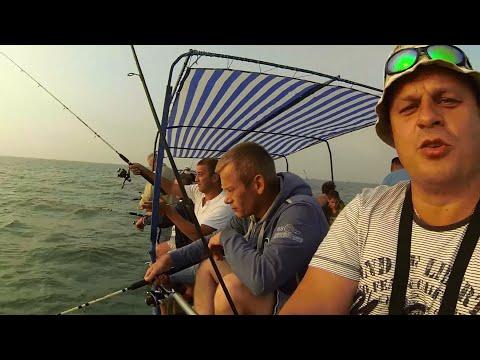 приманки для морской рыбалки в чёрном море