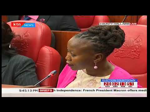 IEBC presents its submissions before the Joint select parliamentary committee