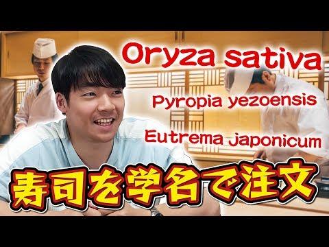【学名寿司】大将!トラシュルス・ジャポニカスひとつ!クイズ王が生物学の正式名称で注文してみる
