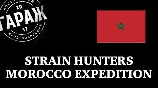 Strain Hunters Morocco Expedition русский перевод и озвучка Гараж