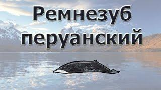 Русская Рыбалка 3.99 Ремнезуб перуанский