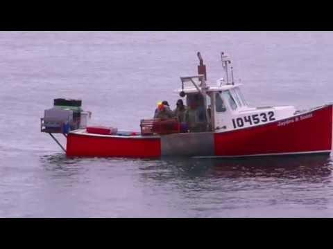 Lobster Fishing Sampsons Cove, Petit de Grat, Cape Breton, Nova Scotia