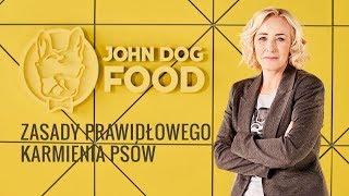 Zasady prawidłowego karmienia psów – ŻYWIENIE – John Dog