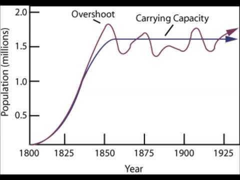 Population Dynamics: Carrying Capacity and Limiting Factors
