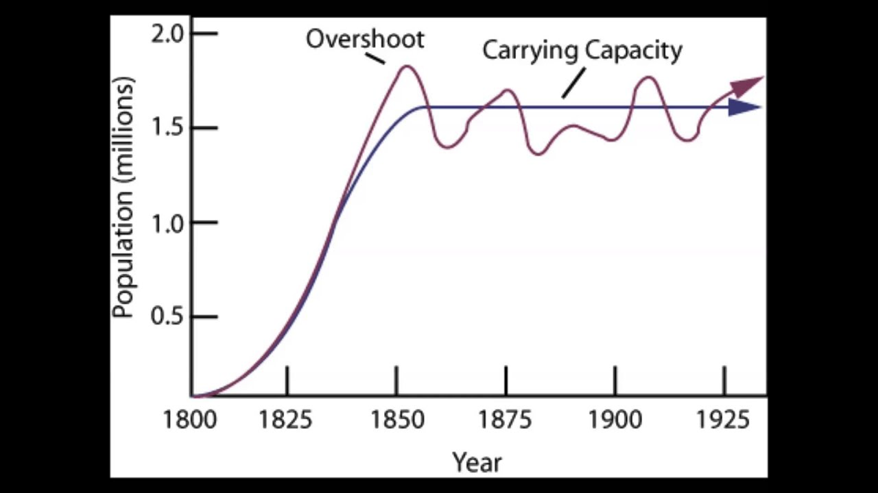 Population Dynamics: Carrying Capacity and Limiting