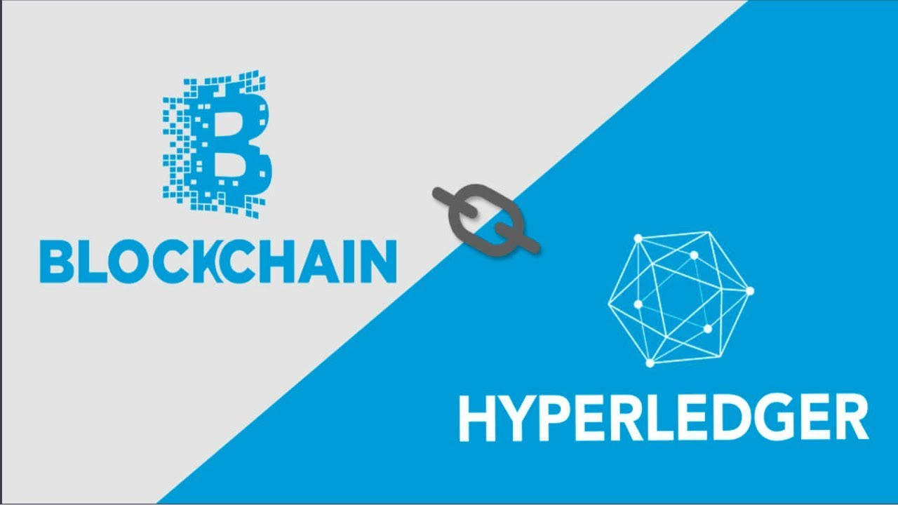Build and Deploy a Blockchain Web App With Hyperledger Fabric & Hyperledger  Composer