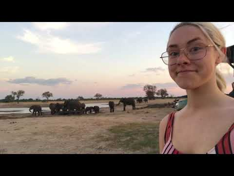 my trip to Zambia & Zimbabwe