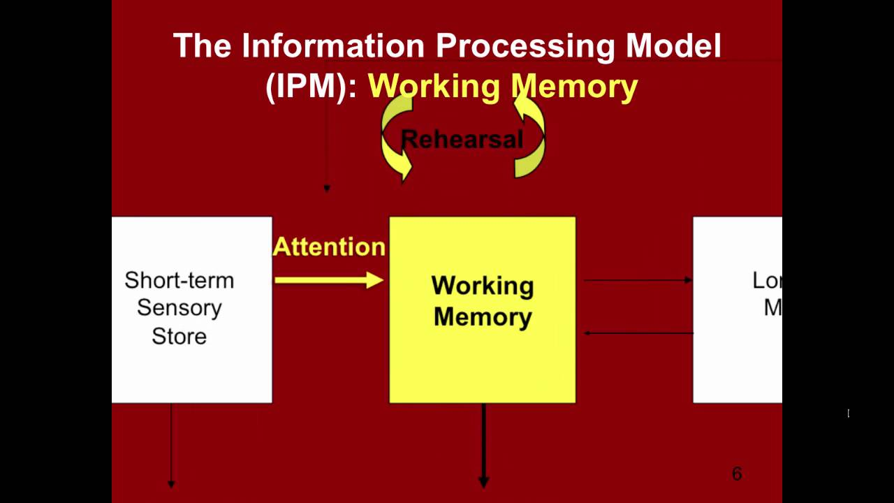 Information processing theory