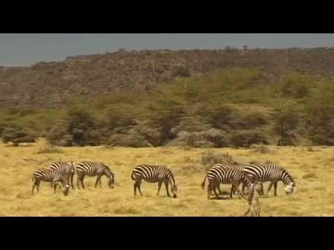 Du lịch Châu Phi đừng bỏ qua Tanzania