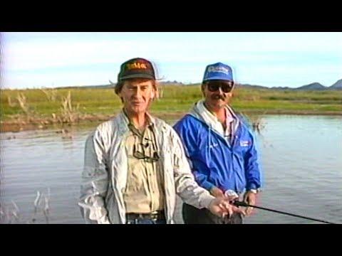 Fishing Alamo lake Arizona with Jerry Suk #151