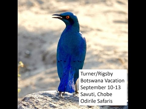 Botswana Trip - 9/10 through 9/13 2016
